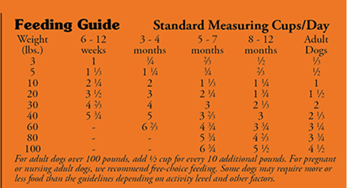 How much/ How often to feed your Puppy