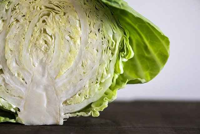 Different types of Cabbages which bearded dragons can eat
