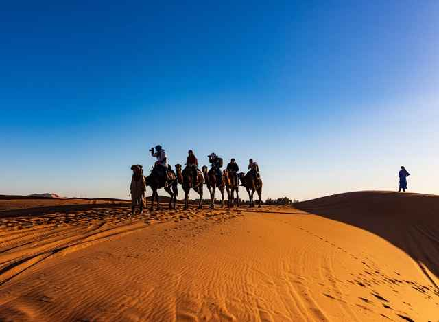 Weight limits for riding Camels - Depending on the Different Camel Breeds