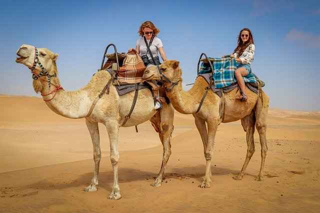 Maximum of 2 People can Ride one Camel
